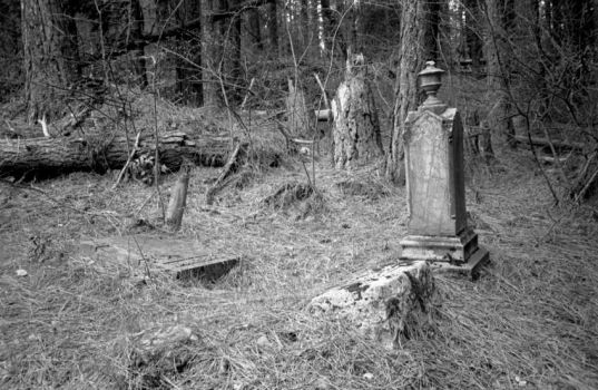 Forest Graveyard 2 by xPoisonIvyx