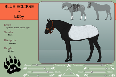 Ref sheet - Blue Eclipse by MammothEquine71
