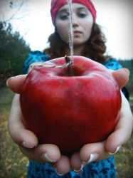 autumn apples2 by adalina-and-justa