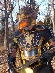 Gryphon Armor Client Photo 2 by Azmal