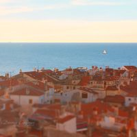 Above the Roofs by DorotejaC