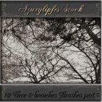 tree_branches brushes part 5 by AzurylipfesStock