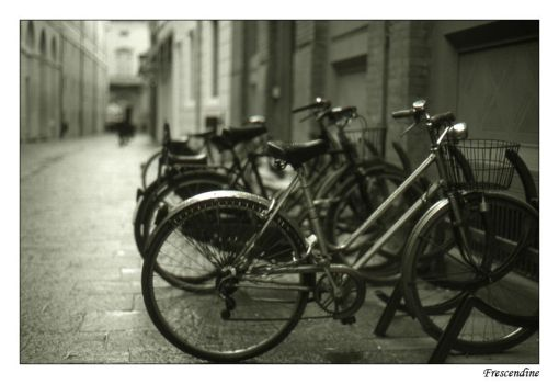 Rainy day and bikes by urban-photography