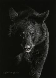 Bearly There - Scratchboard by ShaleseSands