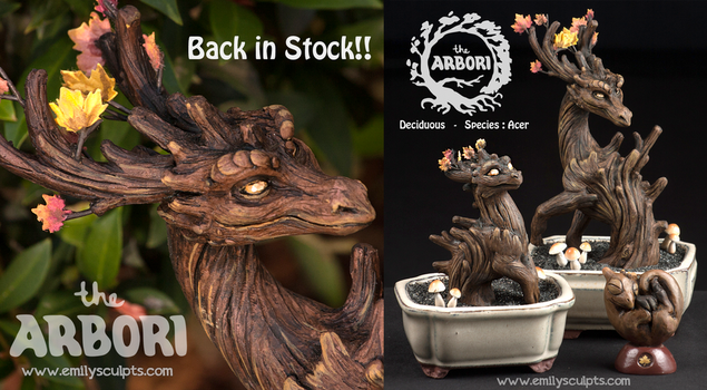 Acer Deciduous Back in Stock!!! by emilySculpts