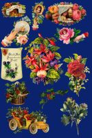 Vict pack 30-floral_quaddles by quaddles