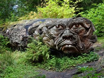 Tree carving by omick