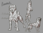 The Korumak Dog by CanisPitbull