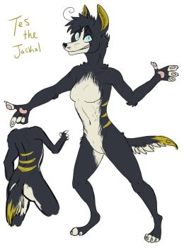 Tes the Jackal! by TestSubject227