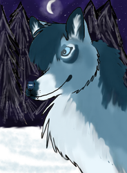 Cresent Night by Winter-Alpha-Wolf