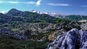 National Park Los Picos de Europa - Spain - 2 (ne) by UdoChristmann