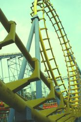life is a roller coaster by leonahaha