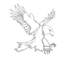 Sketch - Eagle by dePow9999