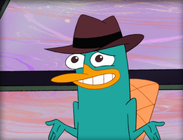Perry by Sparky360