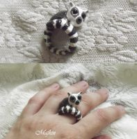 ring lemur by Mafkin