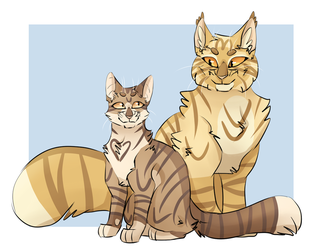 Leafpool and Mothwing by VegaLovesCake