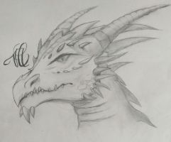Dragon head  by pinkiecitrine