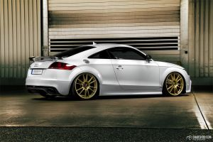 TTRS - Christian Steiberger - 4 by mystic-darkness