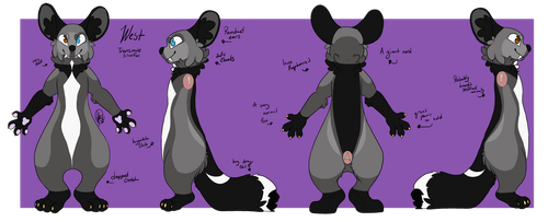 West fursuit reference 2017-18 by Maybe-Avery