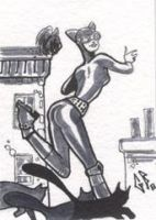 SketchCard: Catwoman_3 by Axigan