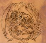 Dragon and Gryphon by KatePfeilschiefter