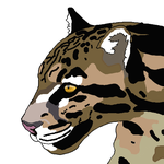 Clouded Leopard 2 by PepsiSneeze