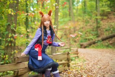Holo (Spice and Wolf) by Shinigami-X
