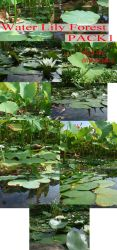 Water Lily Forest Pack by whynotastock