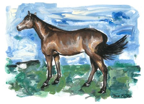 Quick Horse Painting. by TracieMacVean