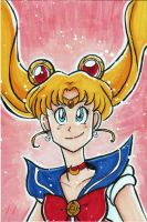 Sailor Moon 4x6 by starlinehodge