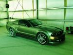 Roush  in Camoflage by AthenaIce