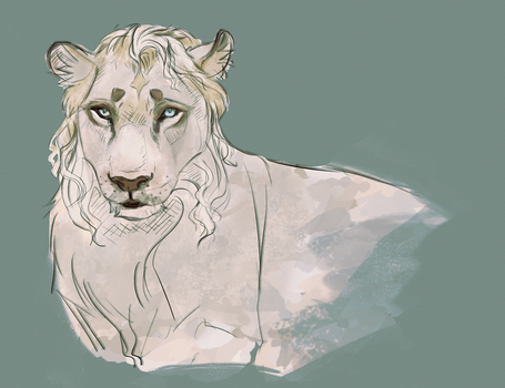 The yellow belly lion by Roiuky