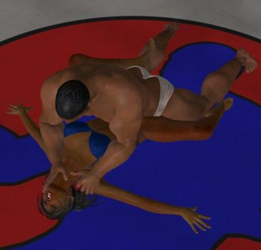 Mixed Wrestling 82 by cattle6