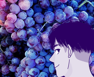 Grapes by fatherpriest