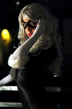 BlackCat- Felicia Hardy by shut-up-and-duel-me