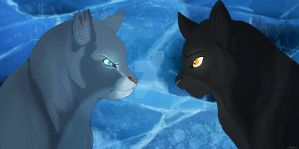 We're Not the Same [Clear Sky and Gray Wing] by Fernyfeline
