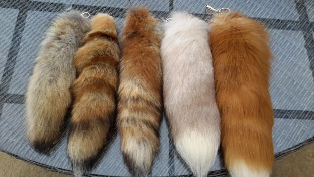 Tails by CinnamonTaxidermy