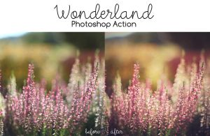 Photoshop Action: Wonderland by sabinefischer