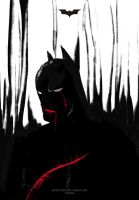 Batmans smile by Lynxina