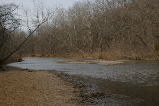 Bare Creek  by IronMAYden99