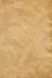 Parchment Paper 4 by Steamrider86