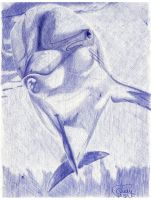 Ballpoint Dolphin by Cindy-R