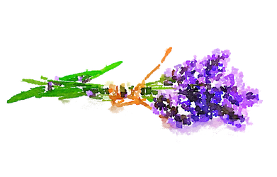 FREE WATERCOLOR PNG KAVENDER FLOWERS USE FREELY by anjelakbm