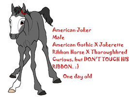 American Joker by Teen-Lyoko-Fan7777
