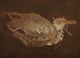 Seabird aquatint by Cocoloy