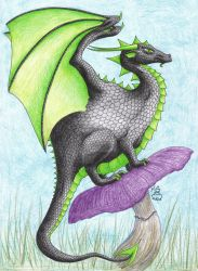 4th of the Fat Dragons by Scellanis