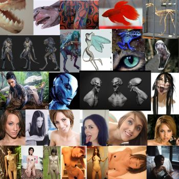 Siren Mood Board by AdventDestiny