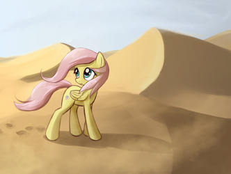 Through the desert by fajeh