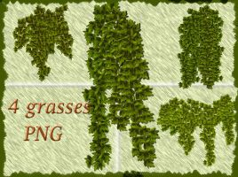 4 grasses PNG by roula33