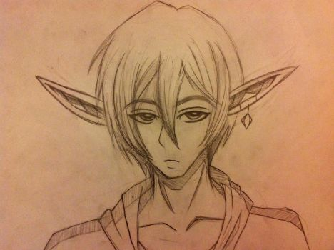 Elf Dude, Kinda Pissed off. by HunterRed